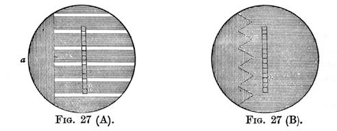 Figure 27 - Cycloscope Images