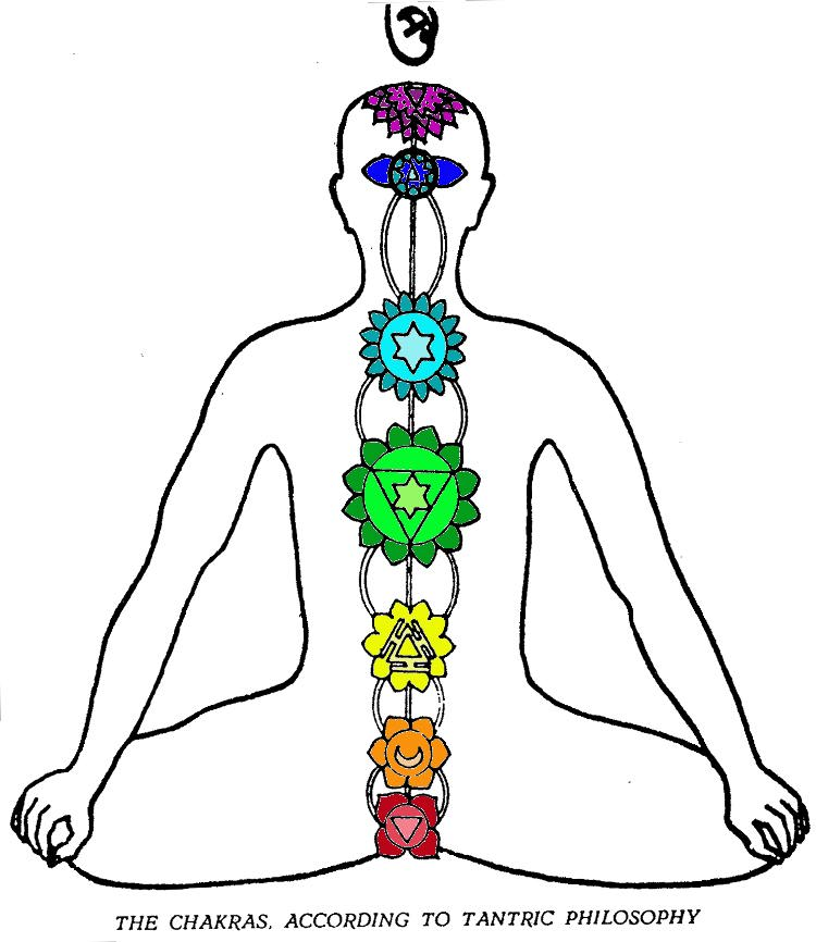 Chart of Chakras Shown as Levels of Consciousness