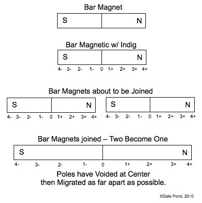 Bar Magnet Voids then Reconstructs Polarity