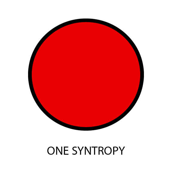 One Syntropy