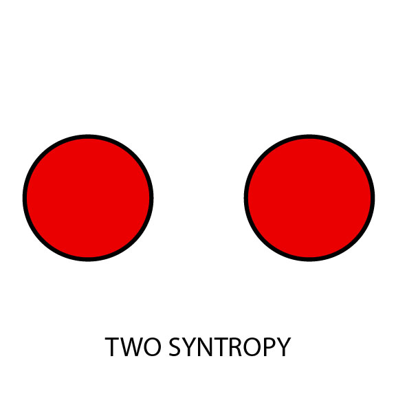 Two Syntropy