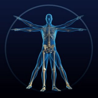 Human Body is a Trinity of Forces