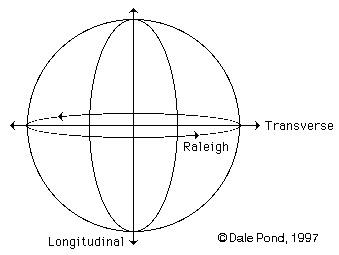 Longitudinal Axis