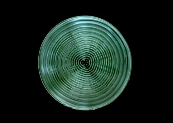 Harmonic Image