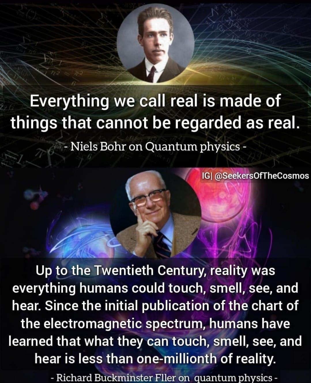 Reality Bohr Fuller