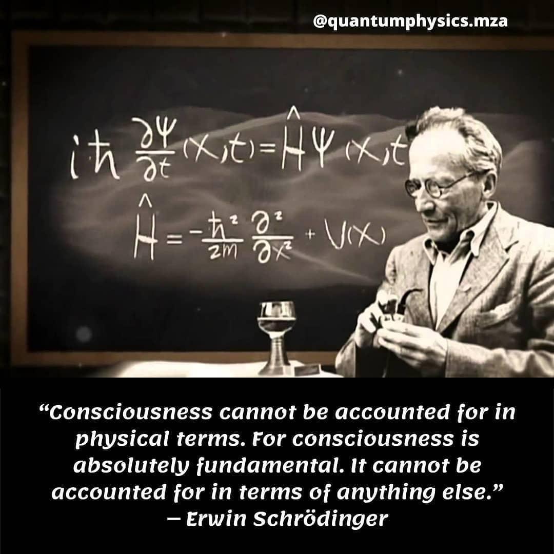 Schrodinger Consciousness