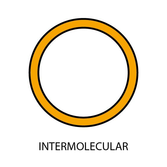 InterMolecular Realm