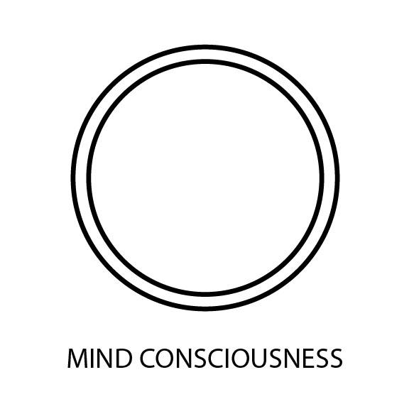 Mind Consciousness