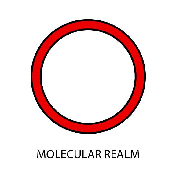 Molecular Realm